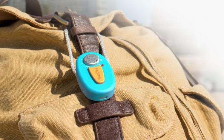 Beachbug Alarm System