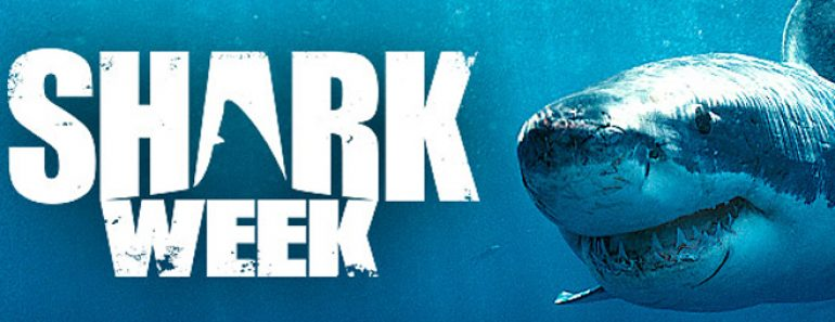 How Much The Discovery Channel Makes During Shark Week