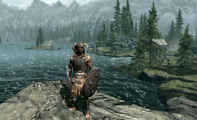 how much is the skyrim franchise worth