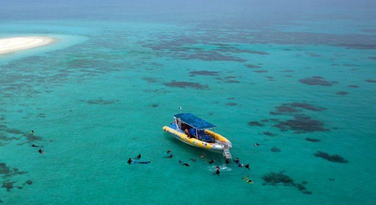 Great Barrier Reef Safari