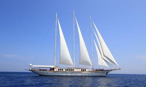 PALMALIFE yacht