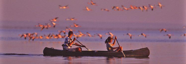 boating-safaris