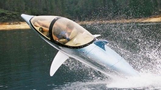 bionic-dolphin