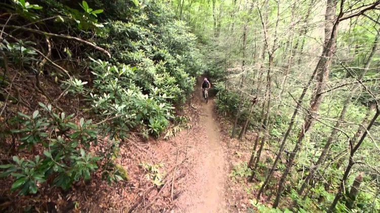 biking-in-pisgah-national-forest