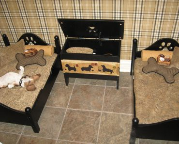 10 Rooms That are a Dog's Dream