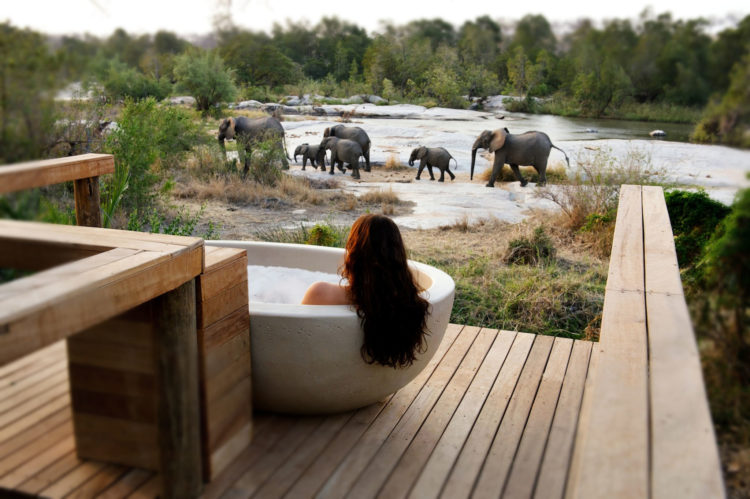 Londolozi Private Safari Game Reserve