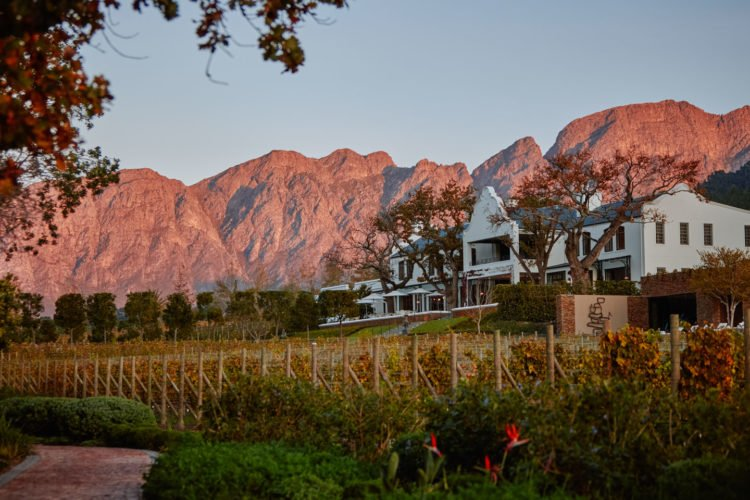 new lodges in africa leeu vineyards cape winelands south africa timbuktu travel