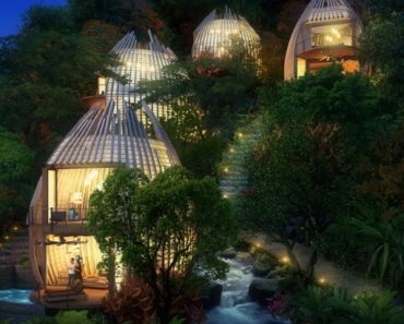 Nine of the World's Most Unique Treehouse Lodges