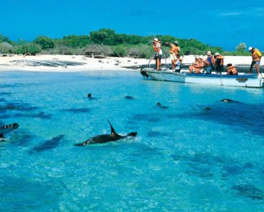 The Top Five Snorkeling Sites in the Galapagos