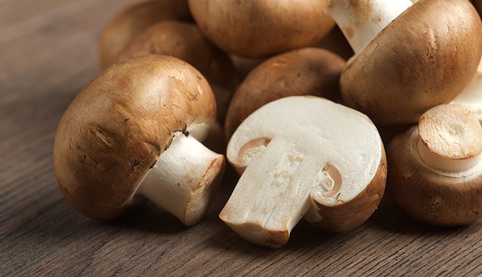 The Five Most Expensive Mushrooms in the World