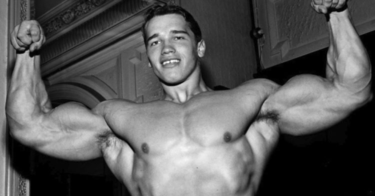 how arnold schwarzenegger achieved a net worth of 400 million