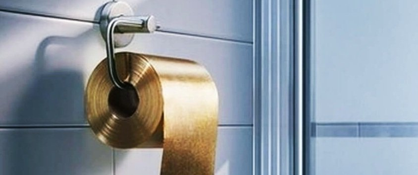 The Most Expensive Toilet Paper In The World