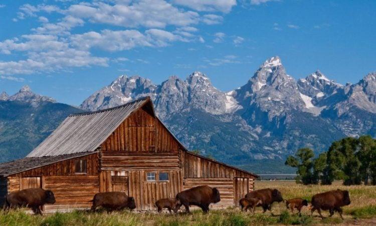 DARLA: Wyoming casual encounters