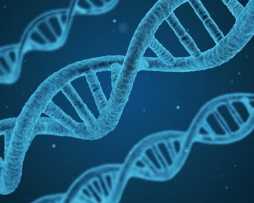 Reprogrammable DNA Computers Are Now a Reality