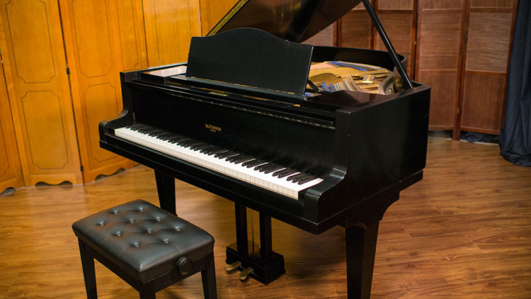 Bluthner Parlor Grand Piano