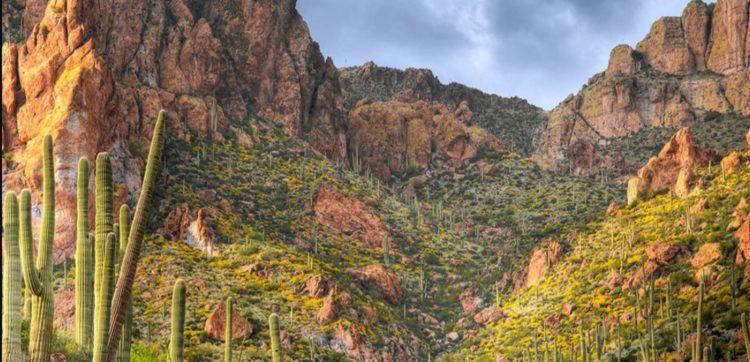 Phoenix Apache Trail