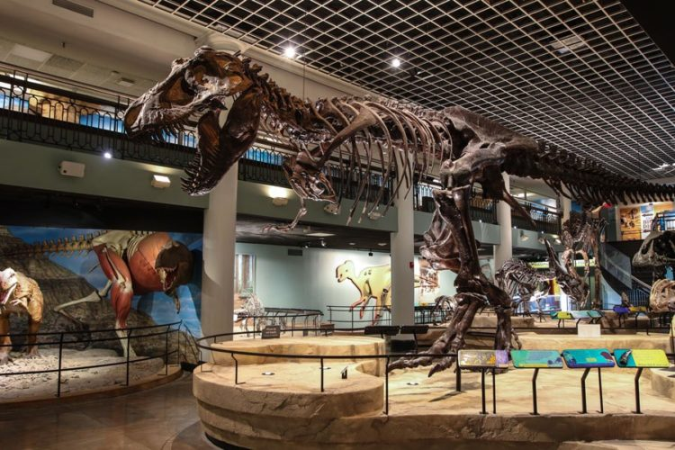 science history museum philadelphia
