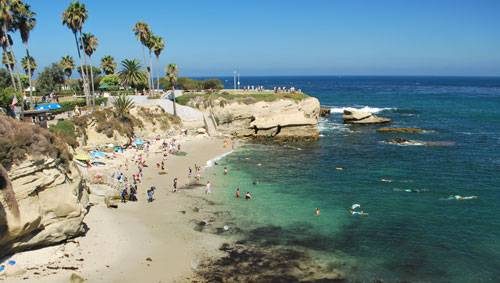 Enjoyable 10 Fun Things To Do At La Jolla Cove San Diego Theyellowbook Wood Chair Design Ideas Theyellowbookinfo