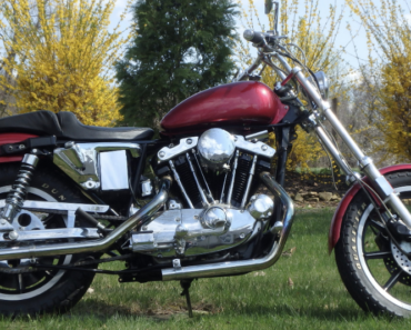 A Closer Look at The 1981 Harley-Davidson Sportster