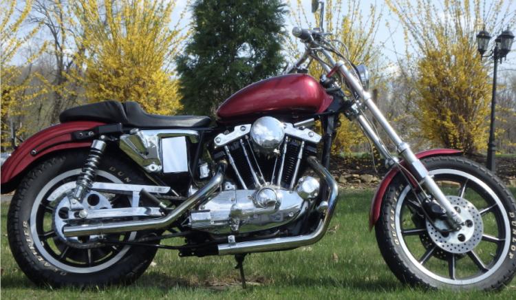 1981 Harley-Davidson Sportster