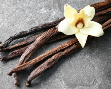 Vanilla Sticks