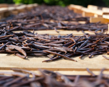 Why is Vanilla So Expensive? Here's the Answer
