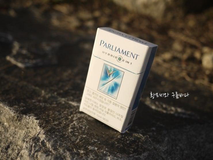 Parliament Hybrid 2 in 1