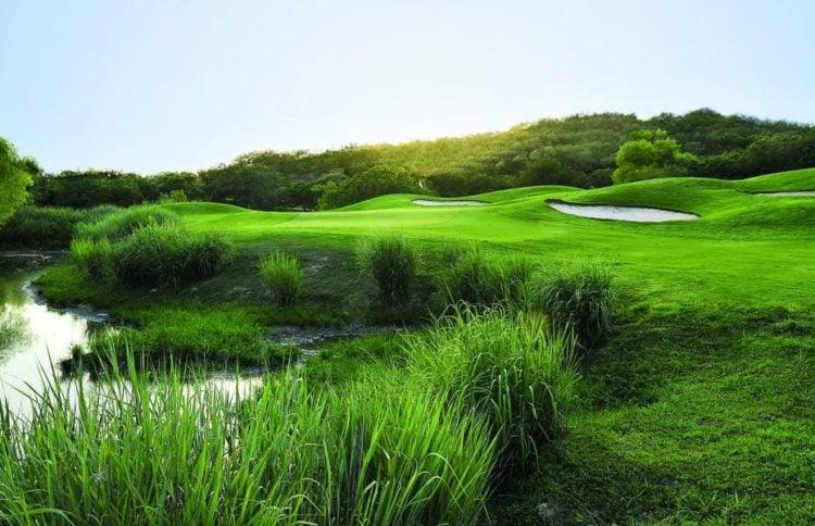 Cedar Creek Golf Cours