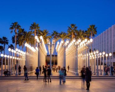 Los Angeles County Museum of Art Housed