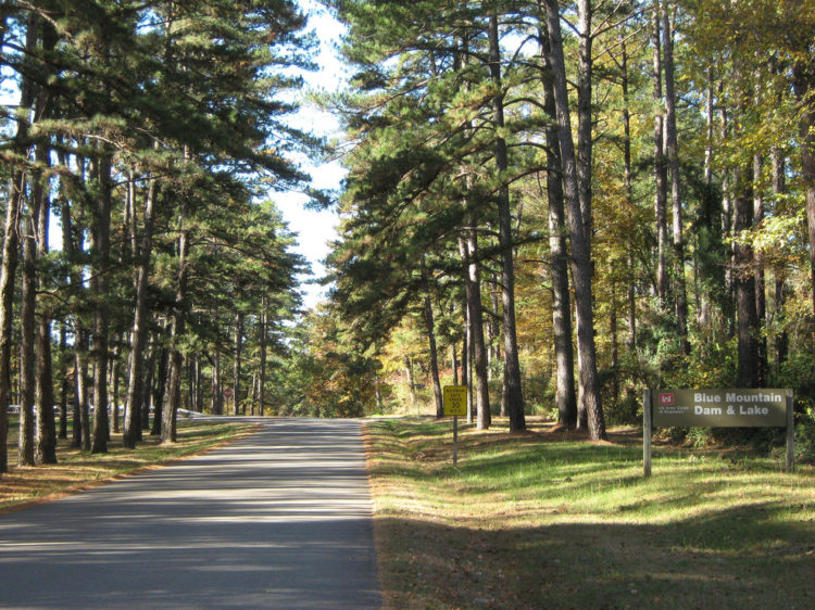 Waveland Park