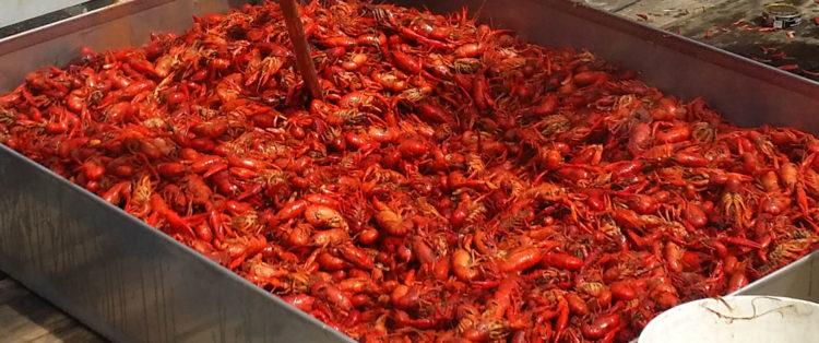 Coosh's Bayou Rouge Restaurant