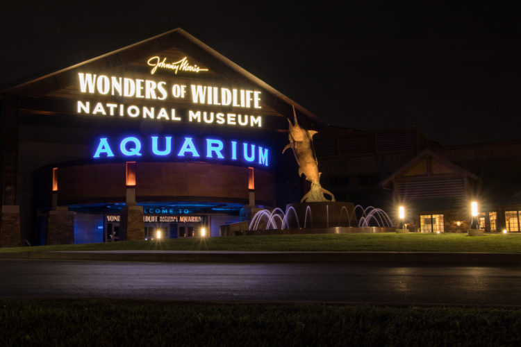 Wonders of Wildlife National Museum & Aquarium