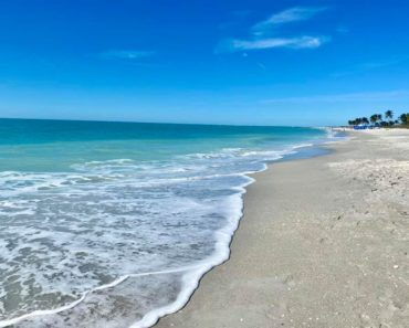 10 Reasons Captiva Island's South Seas Island Resort is the Perfect Florida Family Getaway