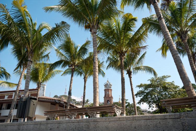 Isla Rio Cuale