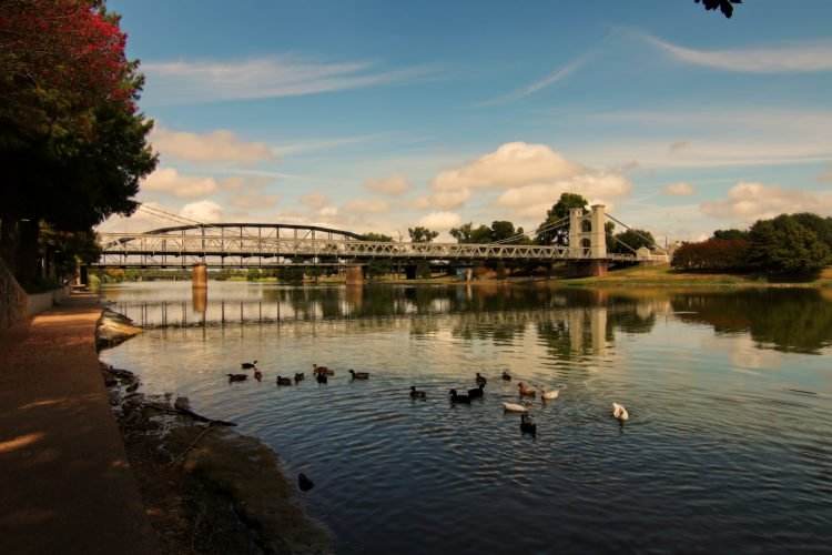 Waco Suspension Bridge & Cattle Drive Sculptures
