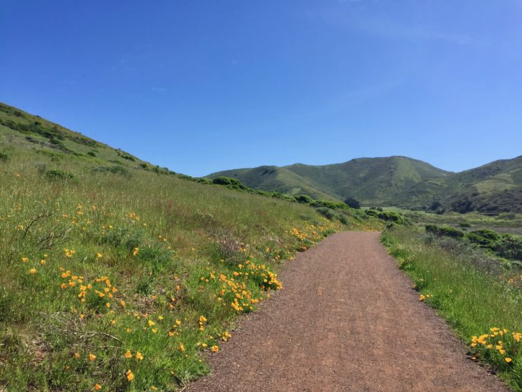 Oak Canyon Nature Center