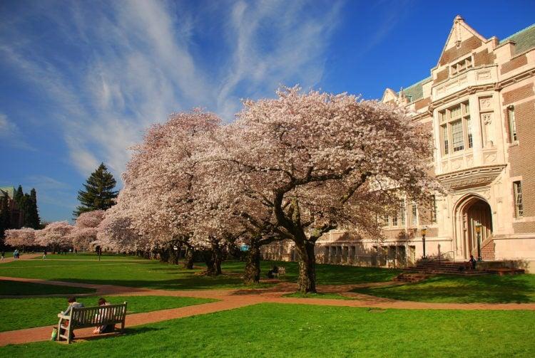 Washington University School of Medicine, St. Louis, Missouri