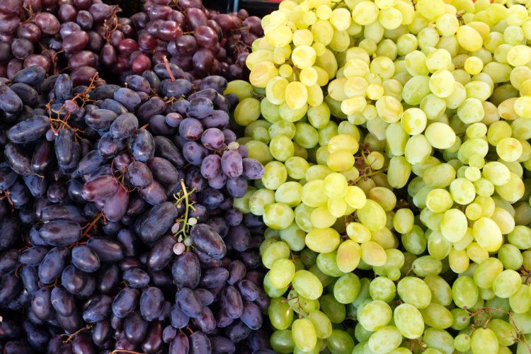 Vineyard Farmer's Market