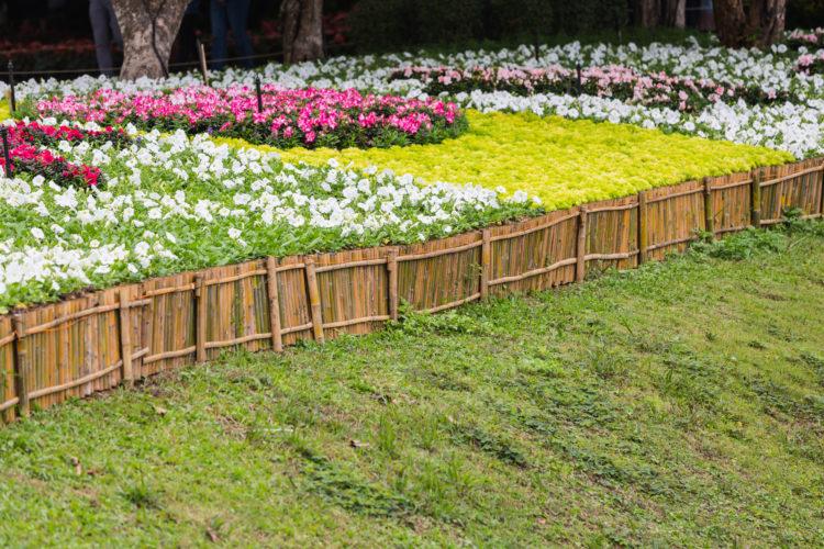 Shinzen Friendship Garden and Woodward Park