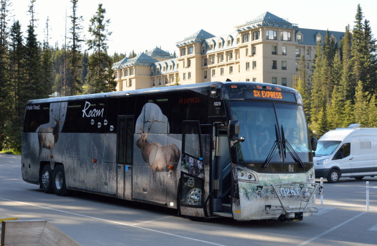 Hop-on/Hop-off Banff Bus