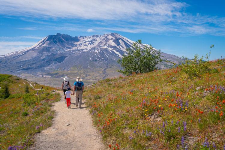 Hardman to Helen Trail