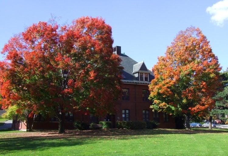 Tufts University School of Medicine, Boston, Massachusetts