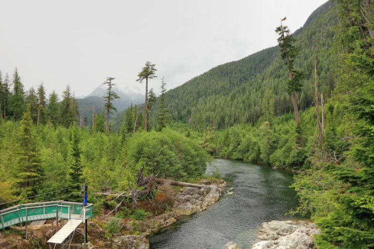 Banff Zipline Tours