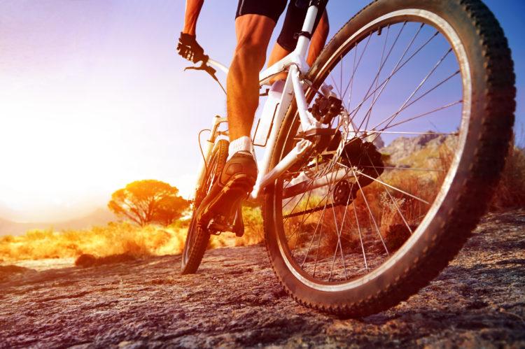 Walk or Cycle Benham Trails Head