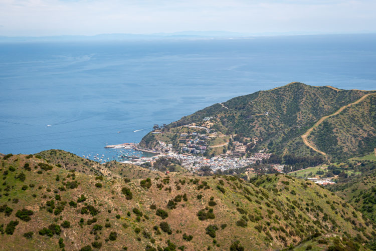 Hike the Trans-Catalina Trail