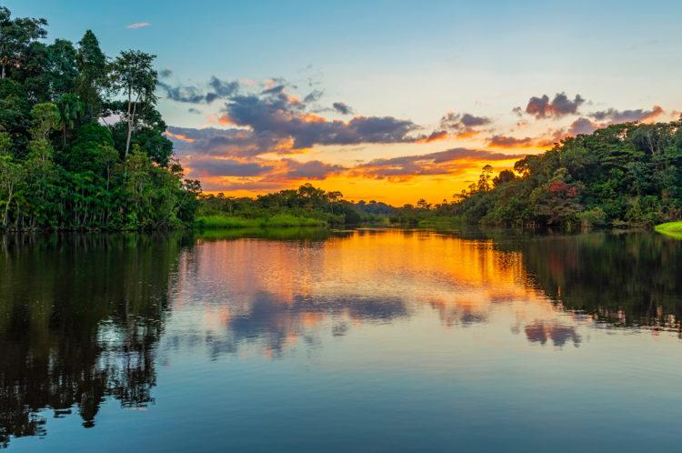 Hidden World of Iquitos