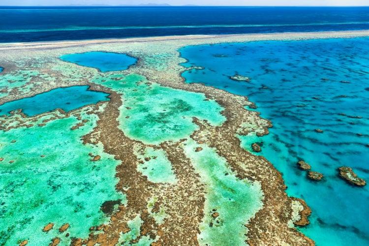 Bight Reef
