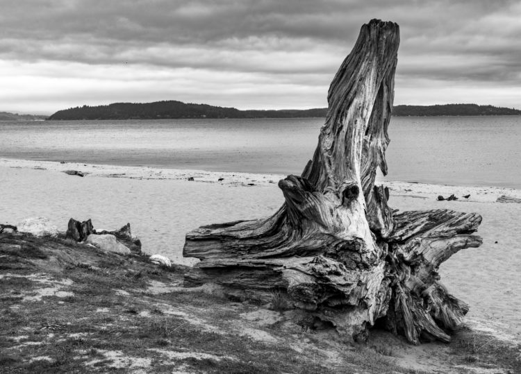 Owen Beach
