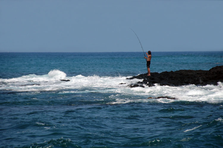 Kona Sport Fishing