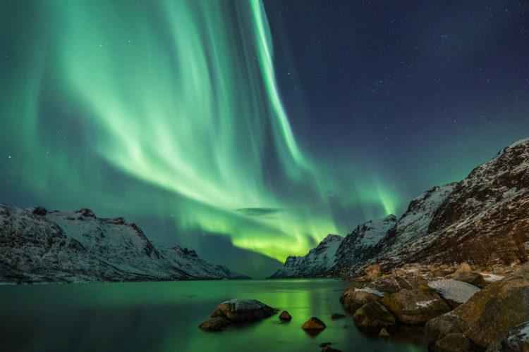 Northern Lights at Aurora Reykjavik